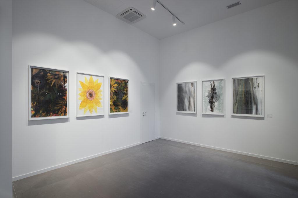 Galleria Giampaolo Abbondio // Maria Magdalena Campos-Pons