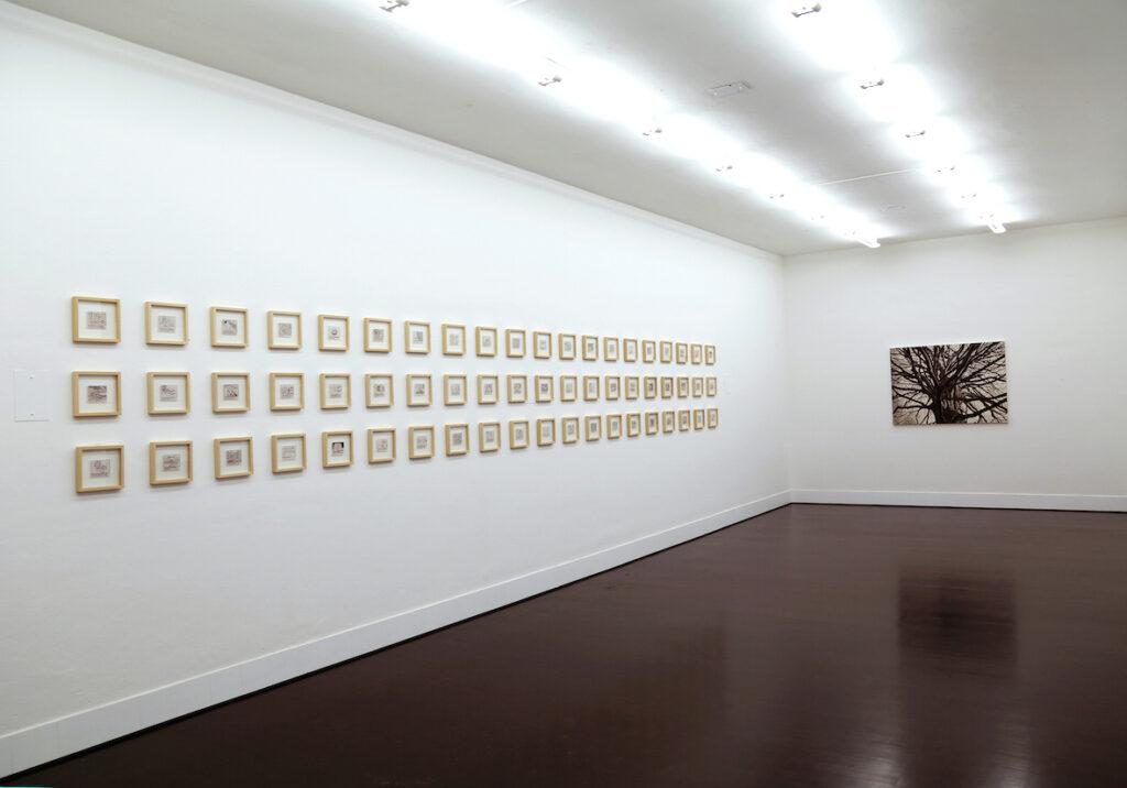 Galleria Giampaolo Abbondio // Debora Hirsch